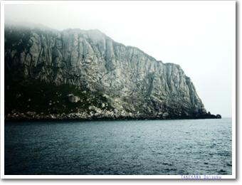 沖ノ島の画像 p1_10